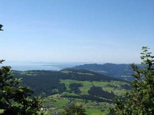 Blick vom Brüggelekopf auf Pfänder und Bodensee
