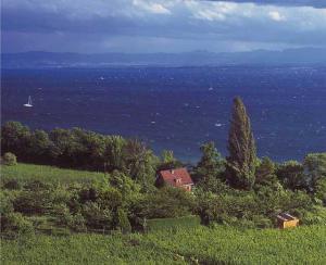 Foto: Peter Kuhnle - Blick auf den Obersee zwischen Meersburg und Hagnau